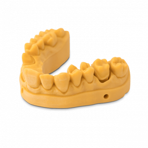 Dental model 3D Printed with NextDent Model 1.0 Oker