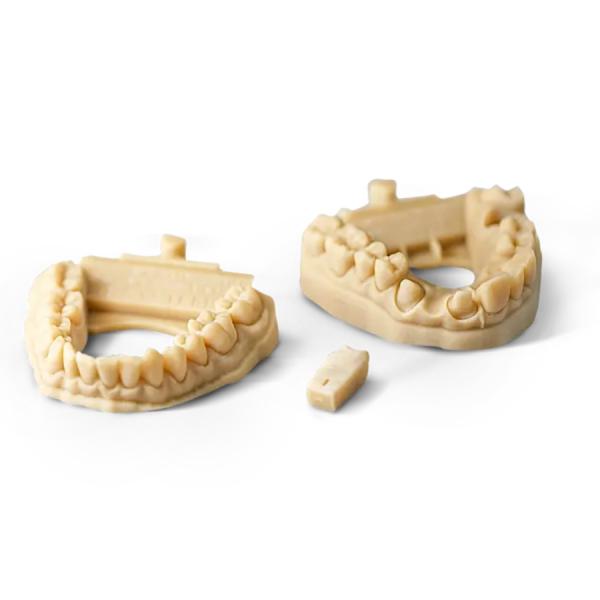 Dental Model 3D Printed with Visijet M2R-TN